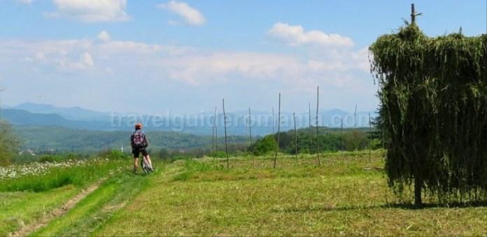 Destinaţia ecoturistică Mara Cosău Creasta Cocoșului Maramureş trasee bicicleta fanate