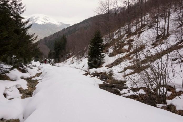 Acces pe creasta Oslei - Muntii Valcan - valea Jiului