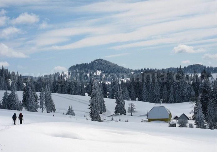 cabana varasoaia padis apuseni iarna winter