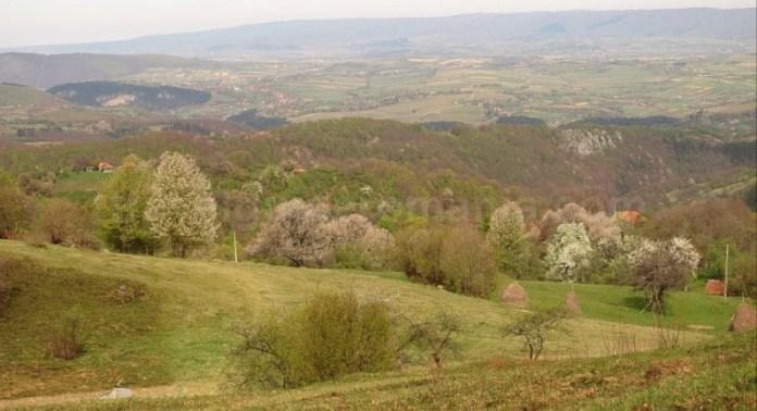 mountain bike Ponoară Pădurea Craiului