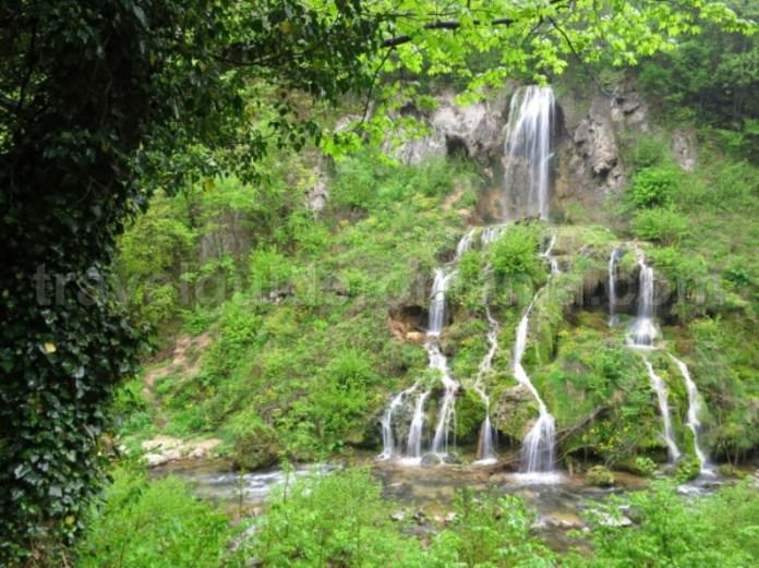 cascada carsa valea minisului