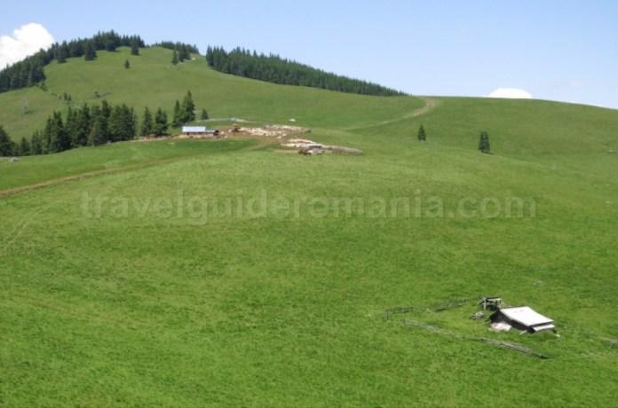Destinația ecoturistică Țara Dornelor suhard stane