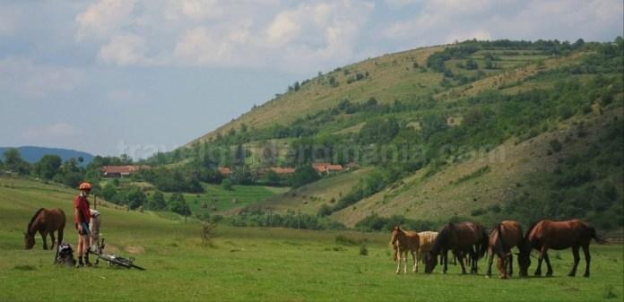 Platoul Vascau Apuseni camp sat