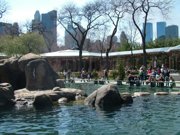 Spend Day Full Of Joy Central Park Zoo York