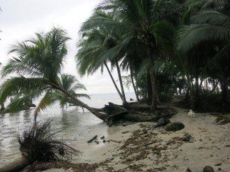 Panama 06