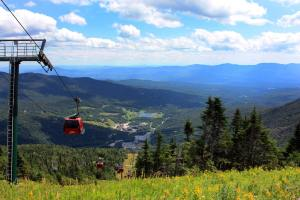View from Mount Mansfield, Stowe Gondola