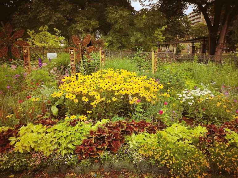 Toronto free things to do: Take a garden tour