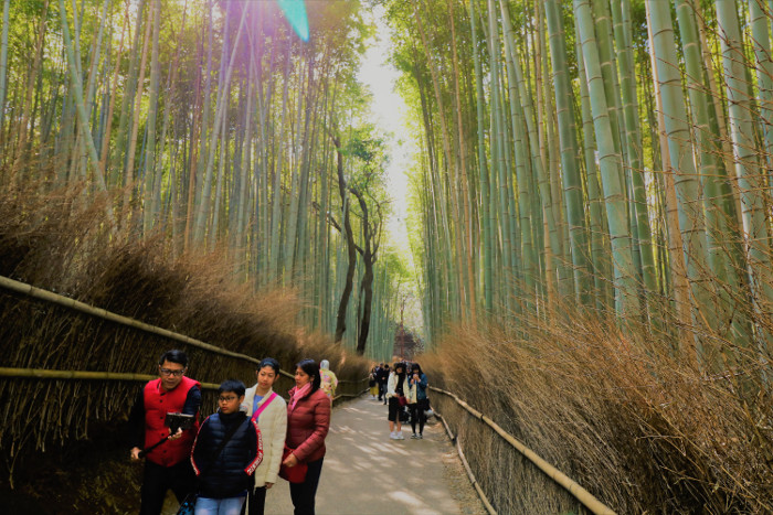 Best places to visit in Japan: Arashiyama