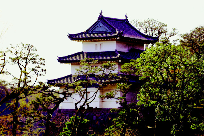 Things to do in Tokyo: Visit the Imperial Palace Gardens