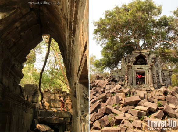 beng melea temple cambodia tree in rubble