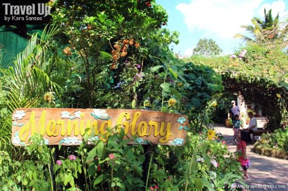 06. sonya's garden tagaytay walkway