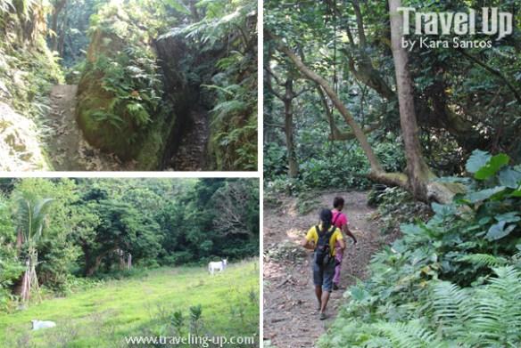 03. mt iraya batanes trail
