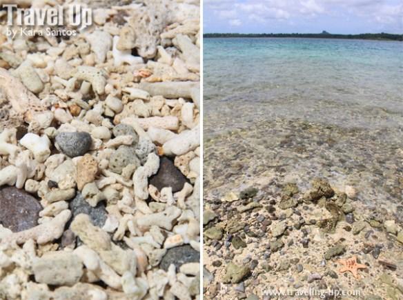 tawi-tawi sangay siapo island corals