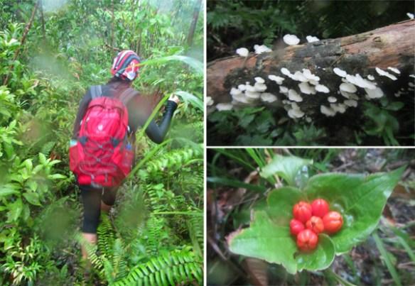07. calbiga cave samar hike