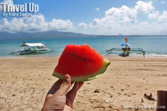 caringo island mercedes camarines norte bicol watermelon