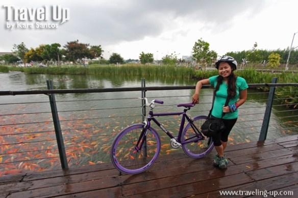 nuvali sta. rosa laguna road bike koi pond
