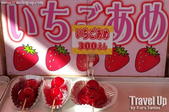 04. takayama japan morning market strawberries