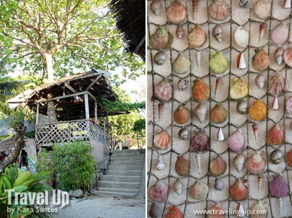 matutinao beach resort badian cebu shells