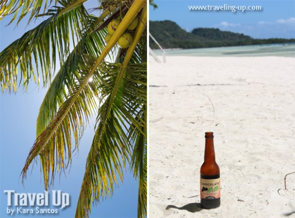 bohol by motorcycle chocolate hills porter coco loco anda beach tree