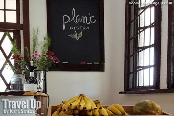 stay at the plant bistro tagaytay sign bananas