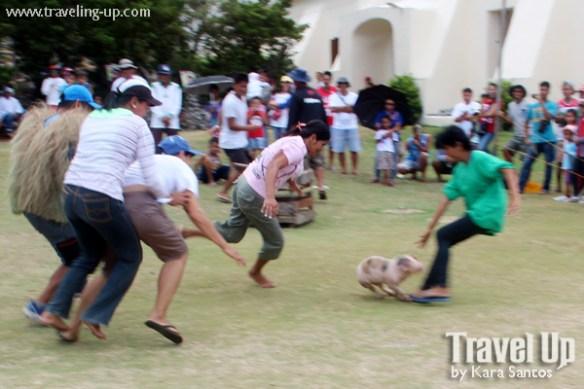 10. vakul kanayi festival sabtang island batanes games pig
