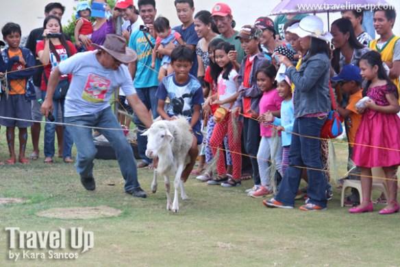 12. vakul kanayi festival sabtang island batanes games pig