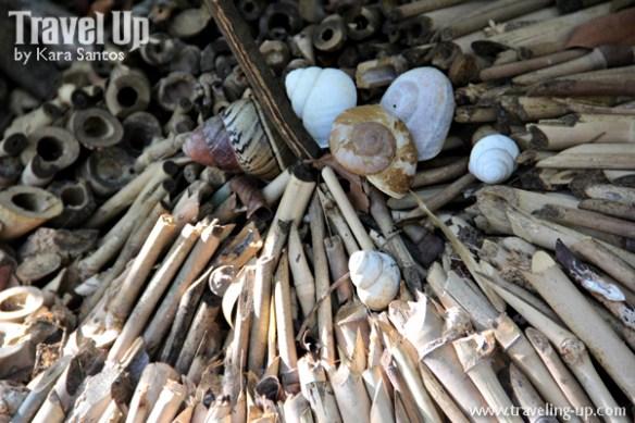 masungi georeserve tanay rizal compost piles shells