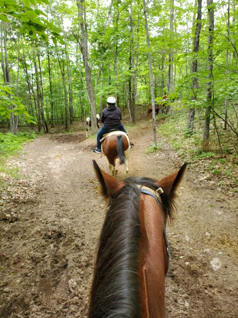 horse back riding in the northwoods  of Wisconsin
