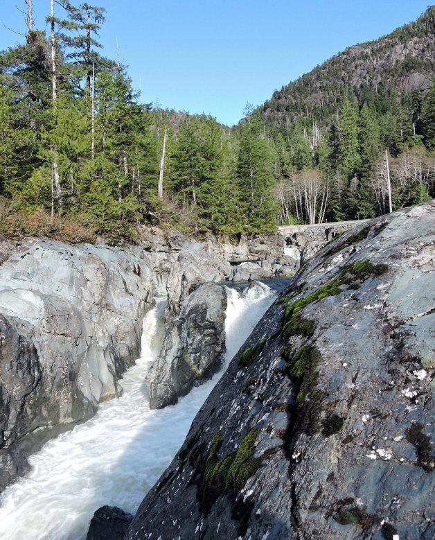 Wally's Creek, Tofino, Pacfic Rim