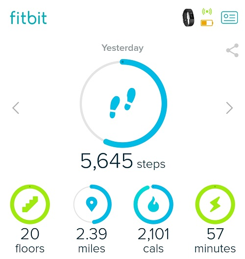 Rock Climbing with Fitbit - Fitness Goals