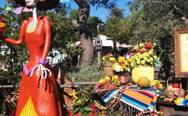8 Reasons To Visit To Disneyland At Halloween Travelingmom