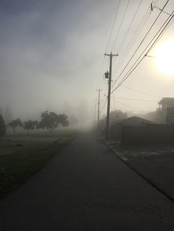 morning-fog4