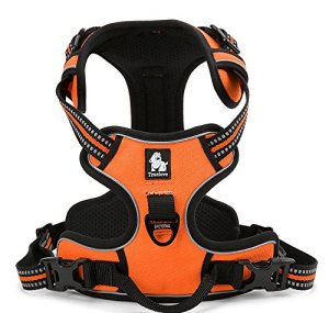 EXPAWLORER No-Pull No escape Dog Harness
