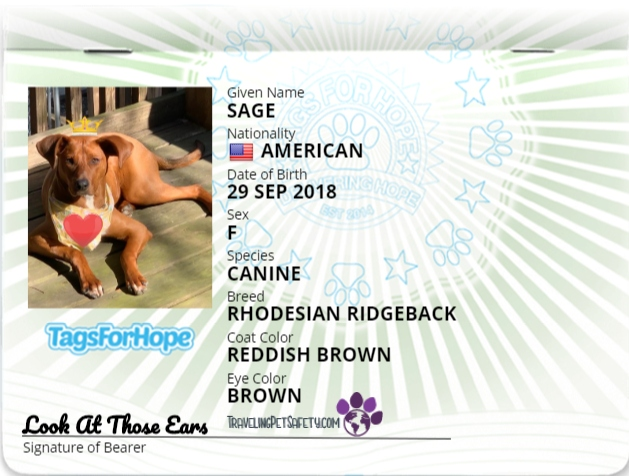 Pet Passport for dogs