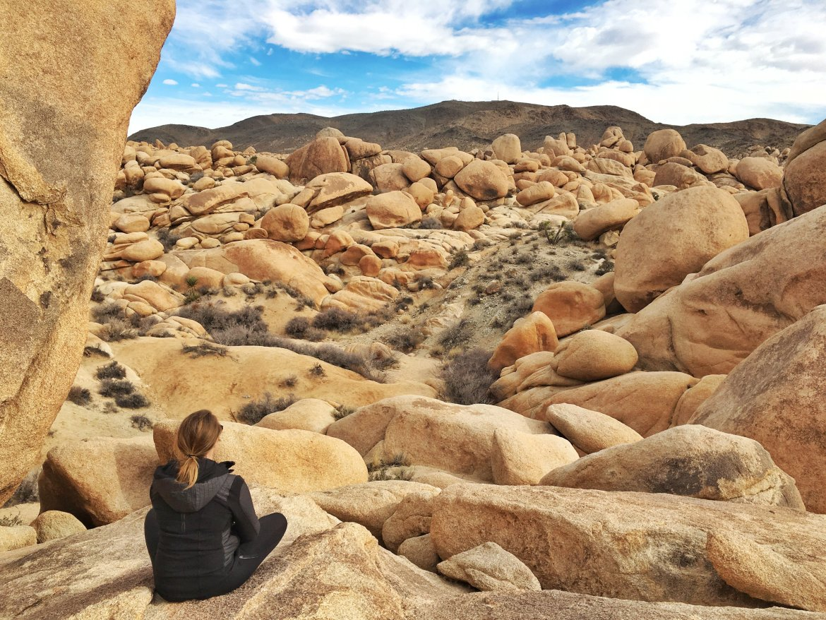 how to get to joshua tree national park