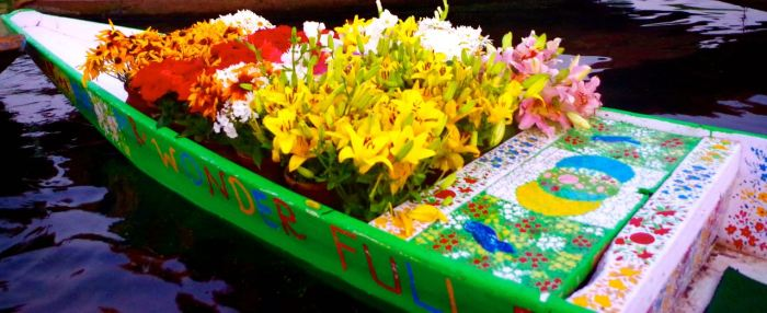 srinagar-dallake-flowerboat-floatingmarket