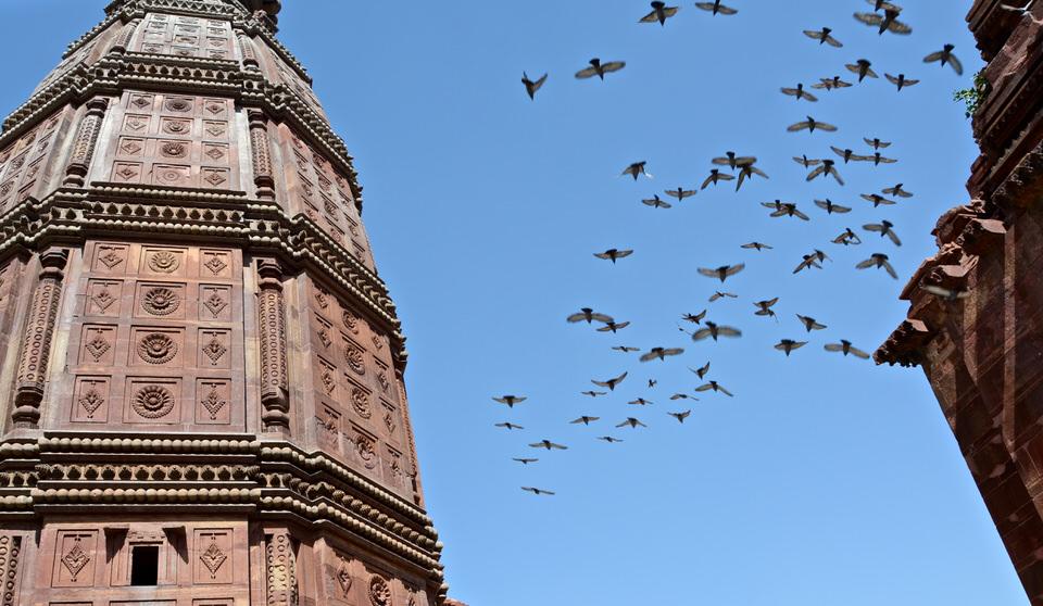 Vrindavan Madan Mohan Temple