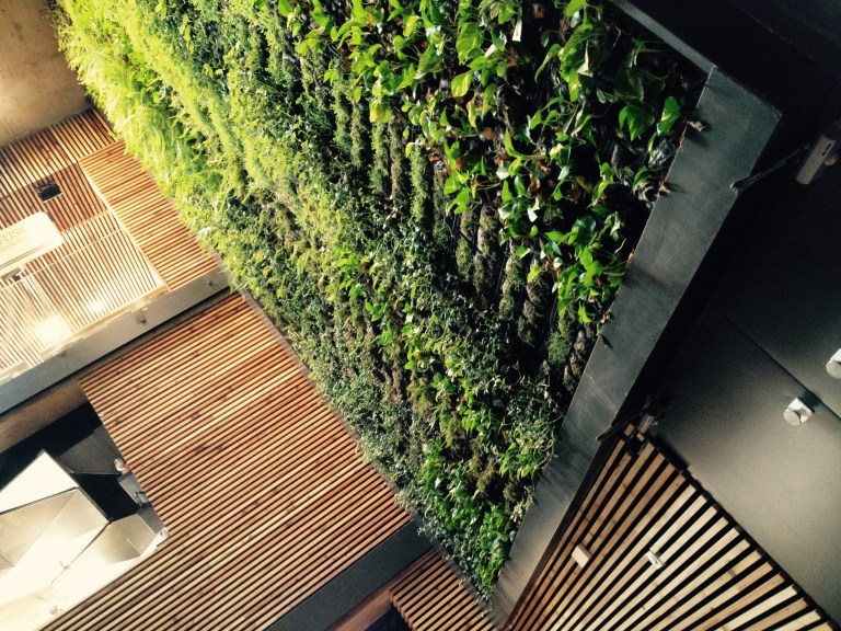 A look at the vertical garden inside.