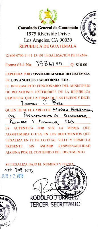 Guatemala required form for dogs entering country