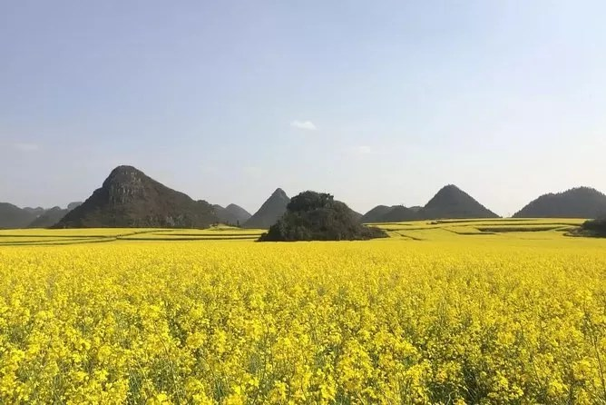 Flower Ocean China - 9 Most Beautiful Places to Visit Before You Die!