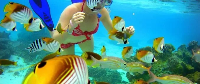 Aroa Marine Reserve e1559845970645 - 7 Popular Places to Visit the Cook Islands