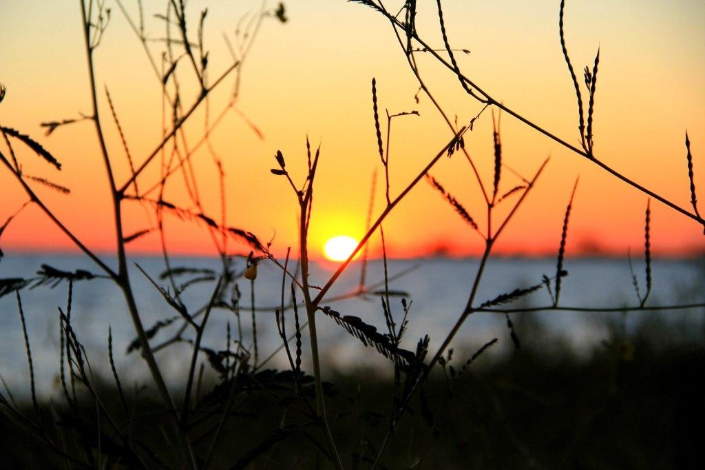 Amazing Sunset in Botswana