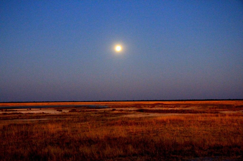 Magnificent Moonrise in Botswana
