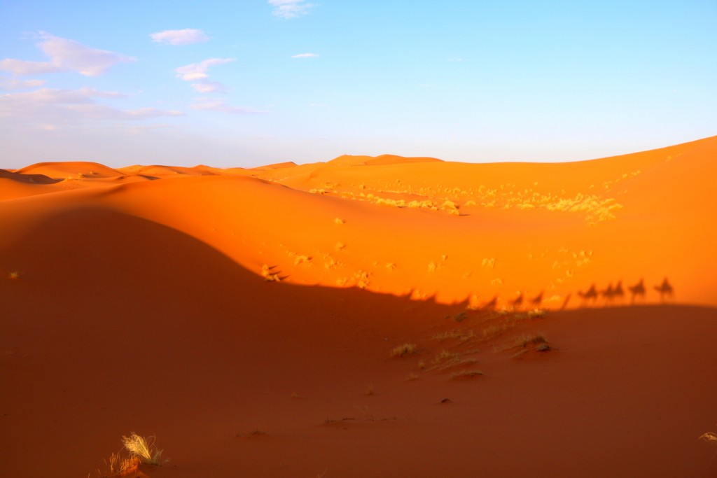 See the shadow of us traveling through the great Sahara Desert!