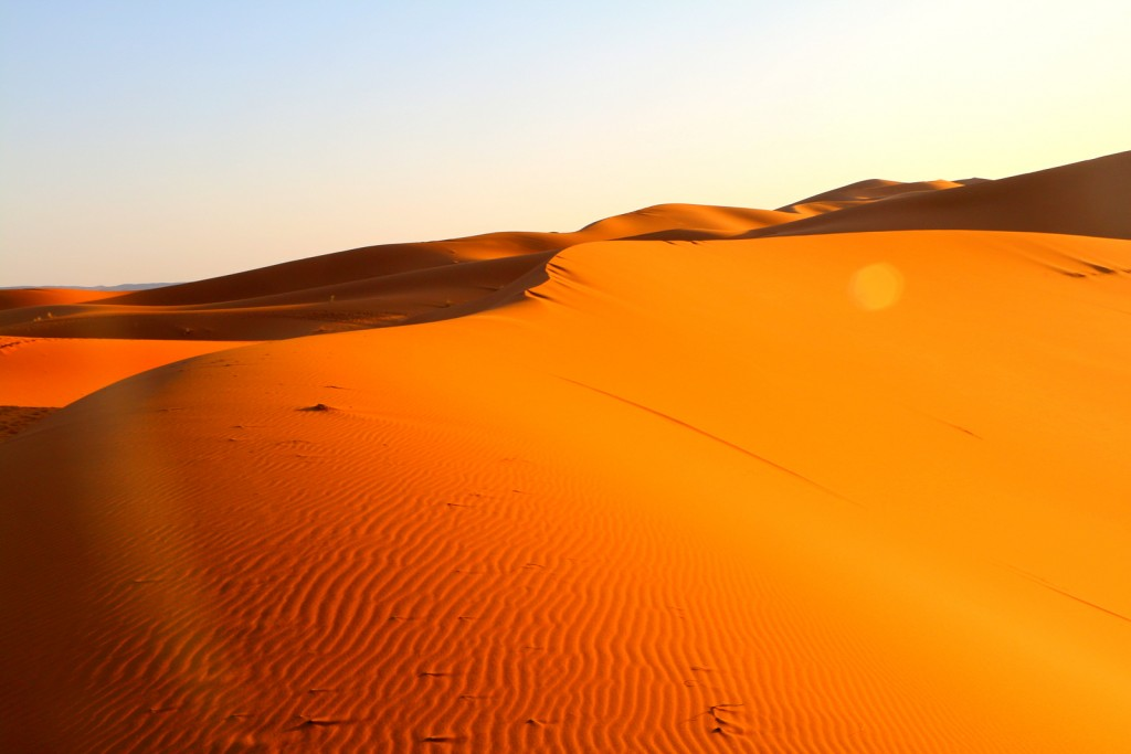 Journey to the Sahara Desert