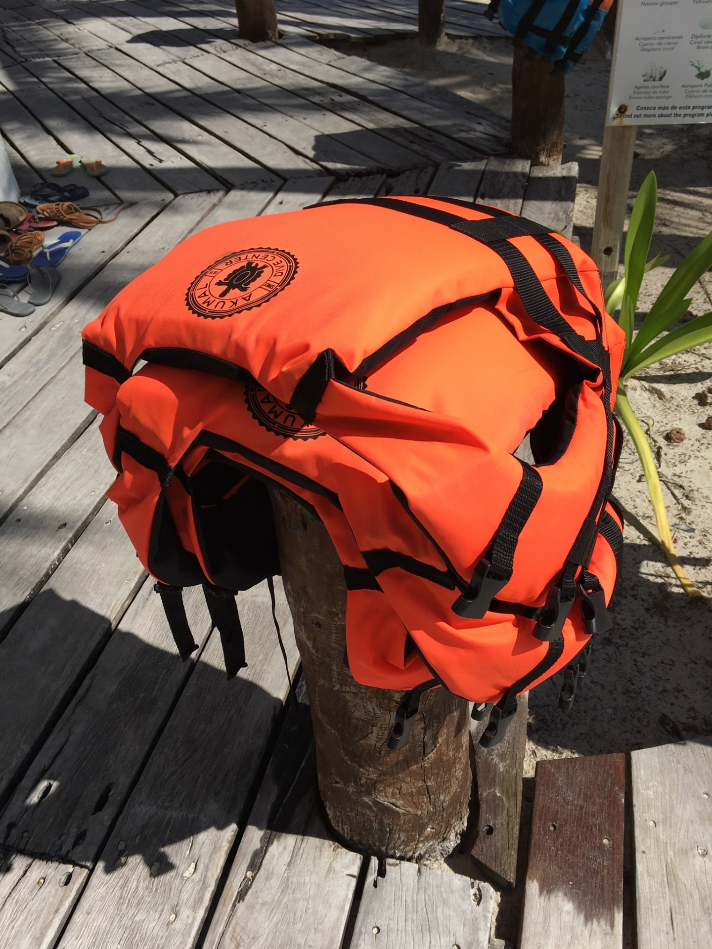 lifejackets aren't mandatory but useful while snorkelling with turtles at Akumal