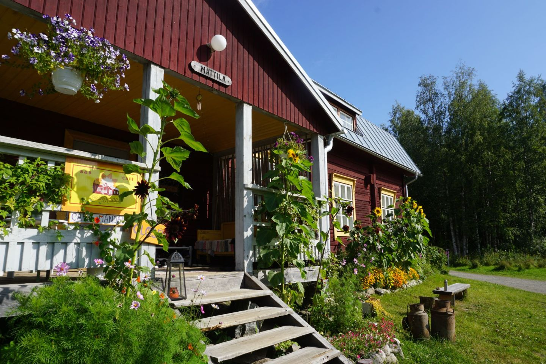 Visiting Koli in North Karelia