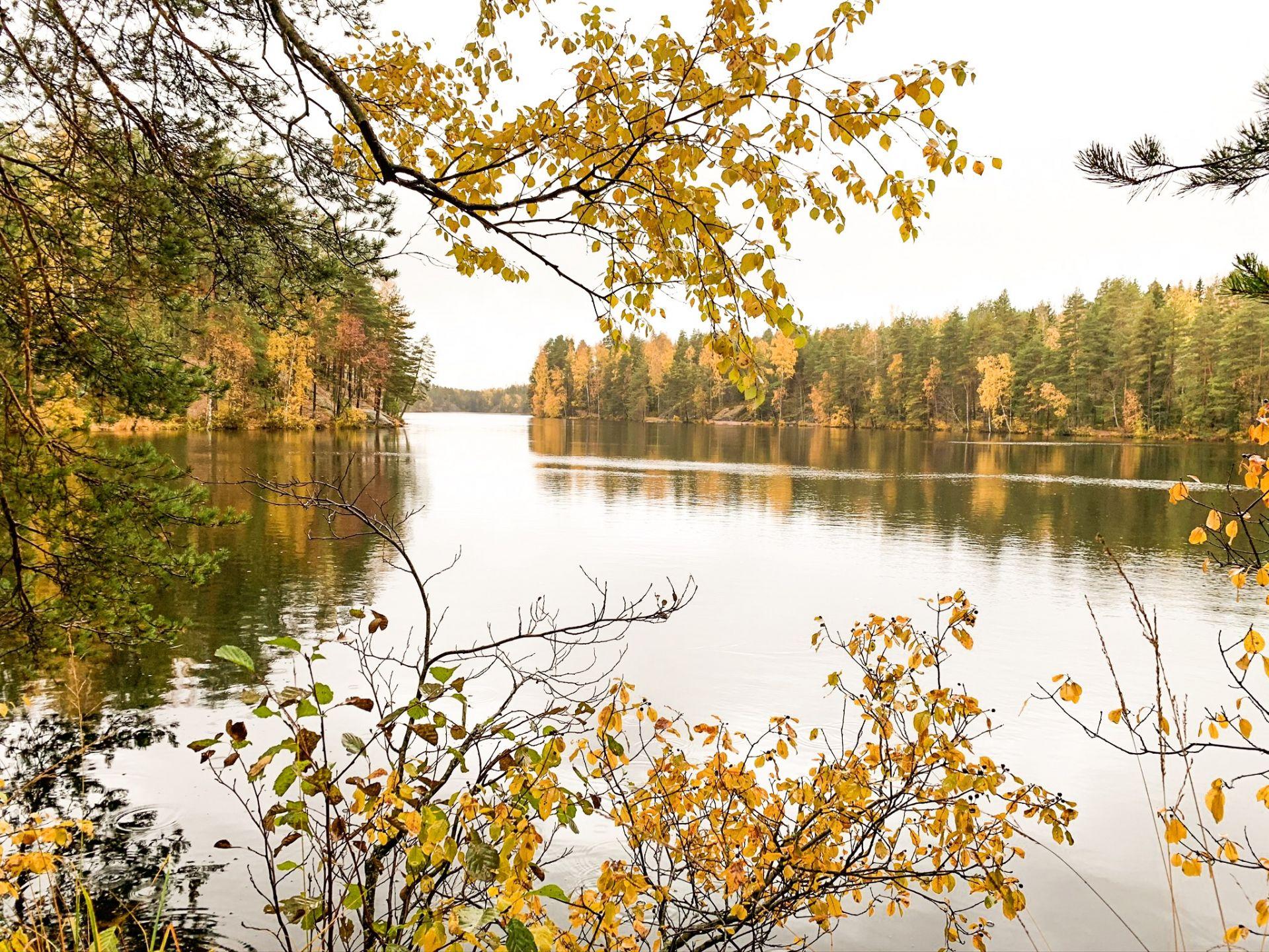 hiking in Luukki Espoo