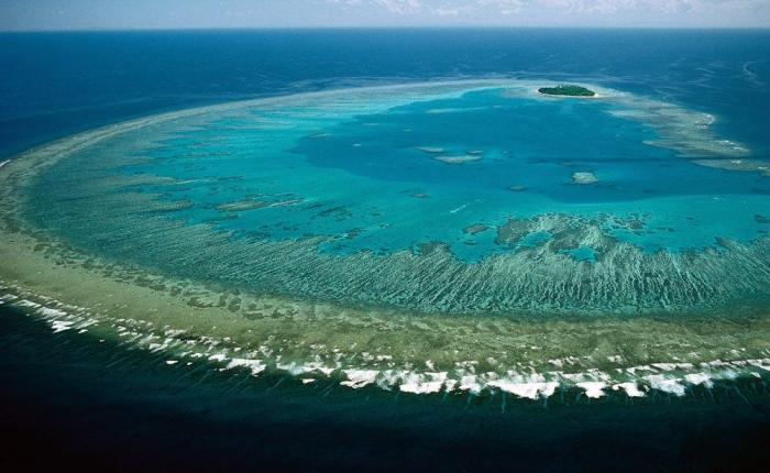 Great barrier reef_Australia_Mytraveljaunts