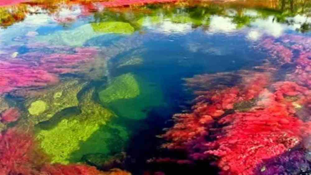 River of five colors, Columbia by Travel Jaunts
